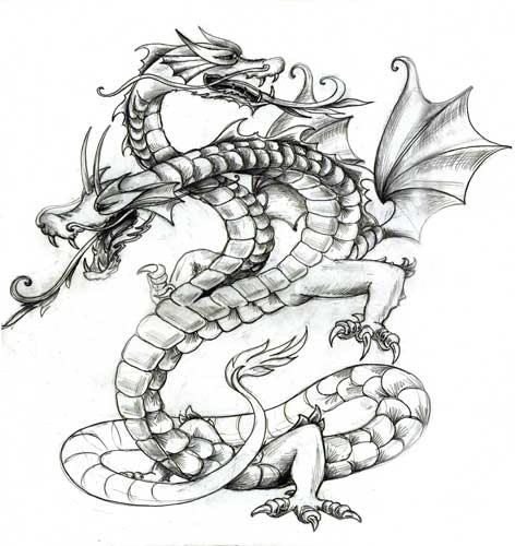 two headed dragon with long tongues in grey color tattoo design. Black Bedroom Furniture Sets. Home Design Ideas