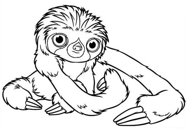 Uncolored baby sloth tattoo design