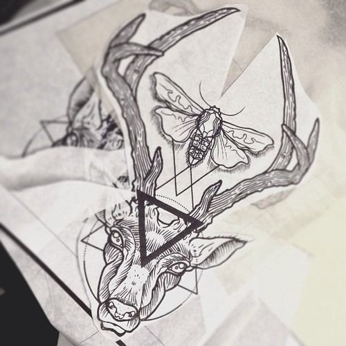 Uncolored deer head with black triangle on forehead and moth