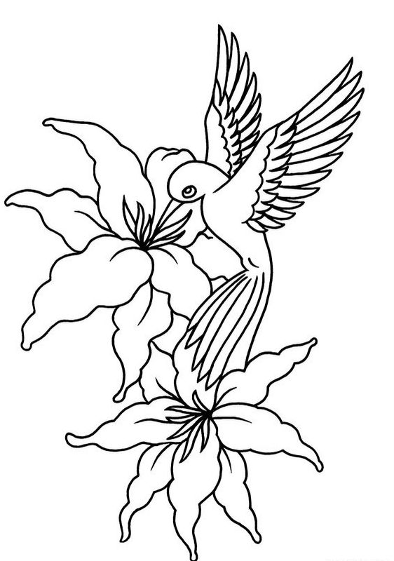 Uncolored drawn hummingbird flying over hibiscus flowers tattoo design
