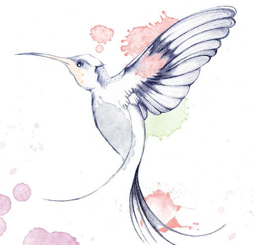 Uncolored hummingbird in pink watercolor splashes tattoo design