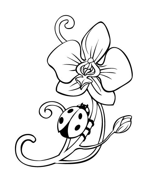 Uncolored ladybug crawling up the orchid flower tattoo design