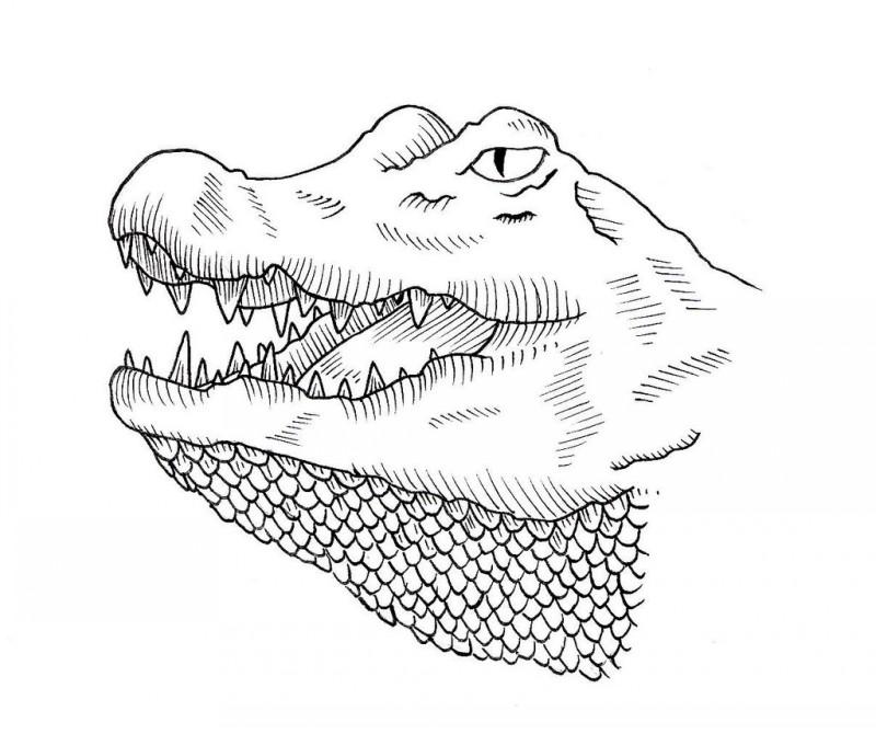Uncolored reptile head with scales neck tattoo design by Jim Cacciabando