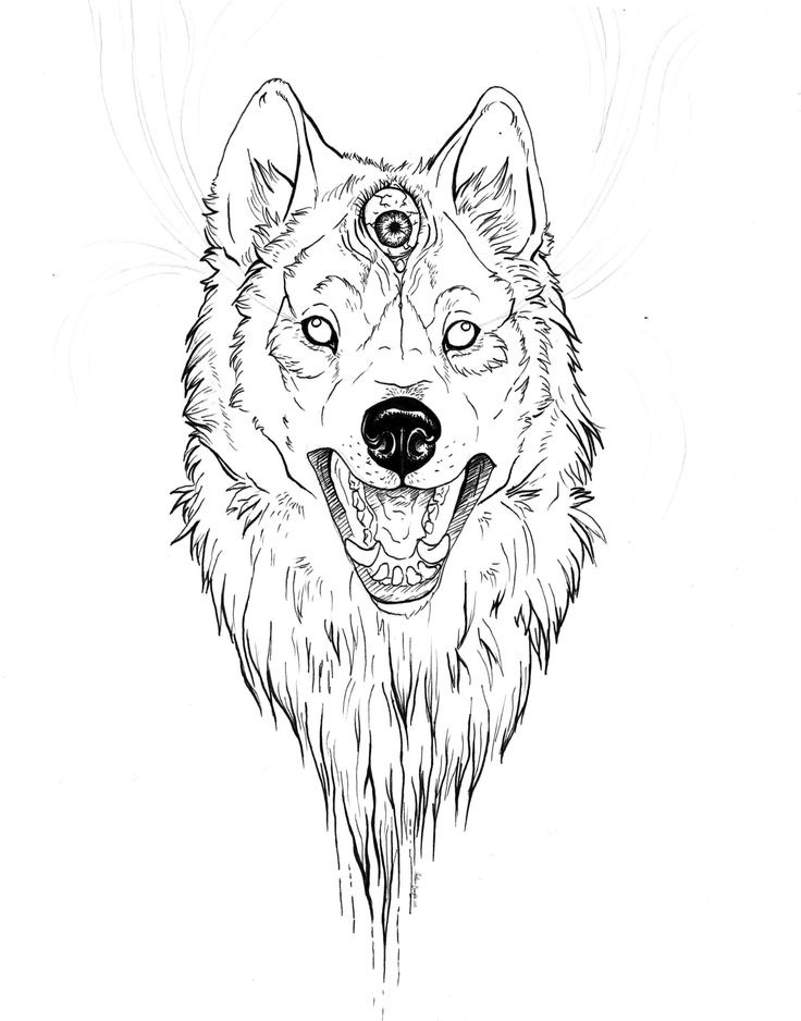 Unexpected black contour wolf with the third crazy eye for Wolf eyes tattoo designs