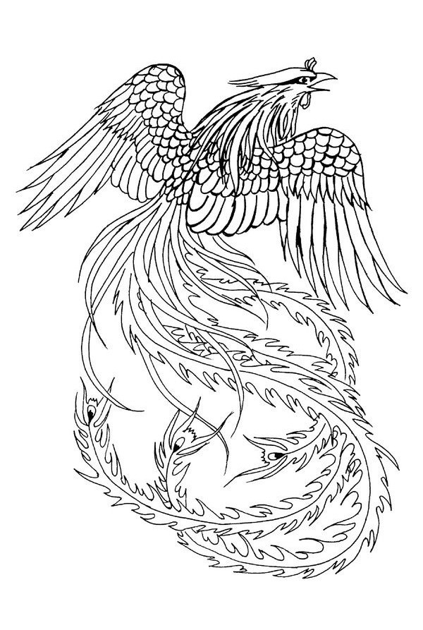 Unique colorless phoenix with long-featered tail tattoo design