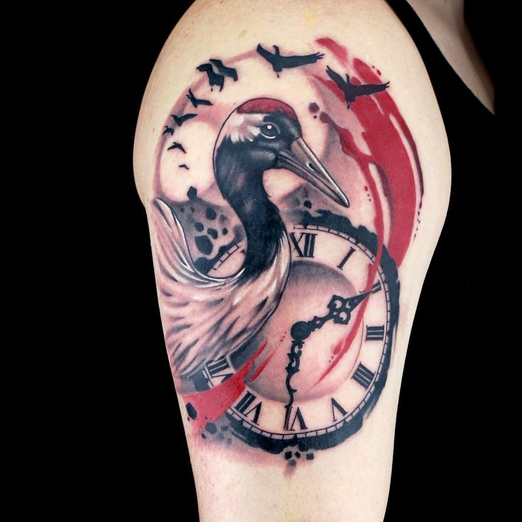 New school style colored shoulder tattoo of nice bird with clock