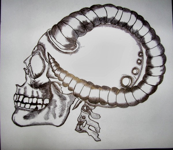 Unusual human skull with big curled ram horns tattoo design by Santiims