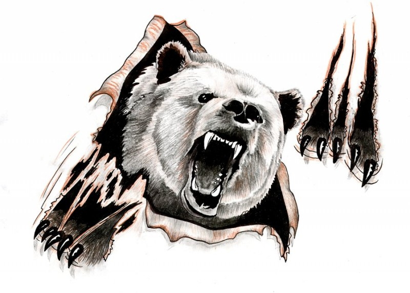 Vicious grizzly tearing paper background tattoo design
