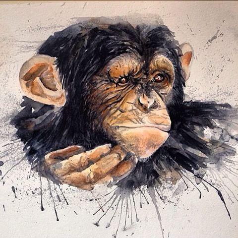 Watercolor chimpanzee scratching his chin tattoo design
