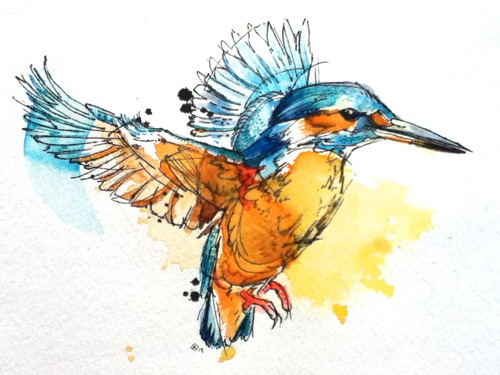 watercolor flying bird in orange and blue colors