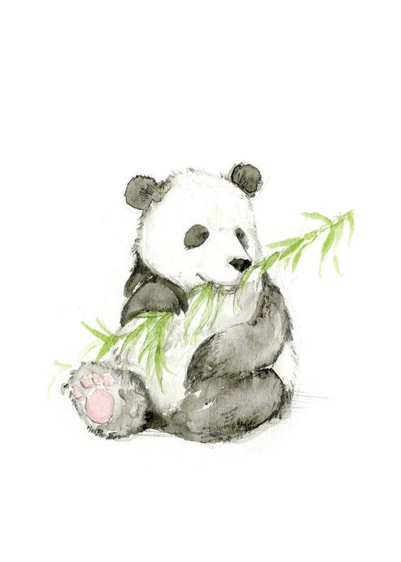 Watercolor Panda Eating Bamboo Tattoo Design Tattooimages Biz