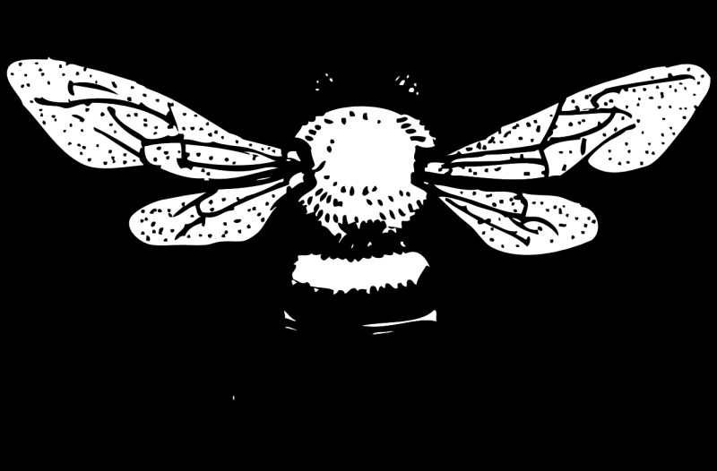 White-ink bee with dotwork elements tattoo design