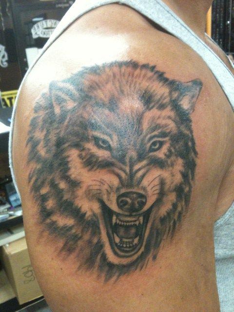 Tatuaggio colorato la faccia del lupo con la bocca spalancata