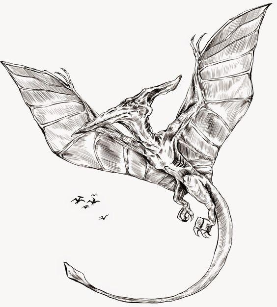 Wonderful grey-ink flying dinosaur with long tail tattoo design