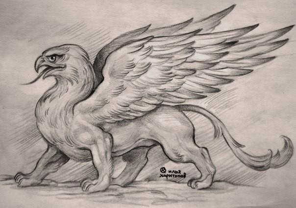 Wonderful pencilwork walking griffin tattoo design