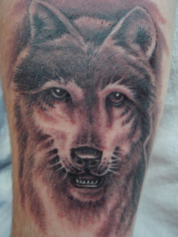 A large tattoo of a wolf muzzle