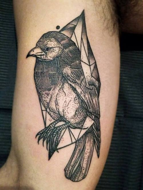 Accurate dotwork style painted by Michele Zingales biceps tattoo of bird