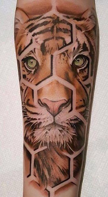 Amazing designed and colored forearm tattoo of tiger portrait