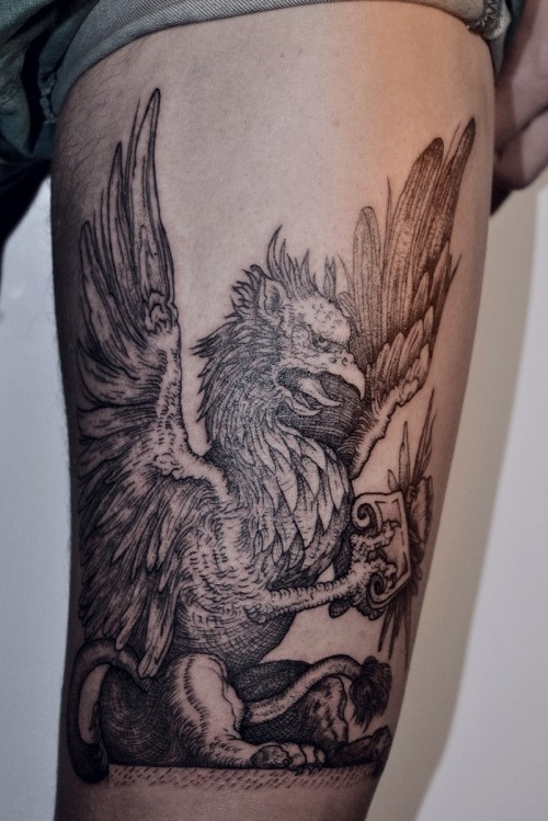 Great Griffin Pictures Tattooimages Biz border=