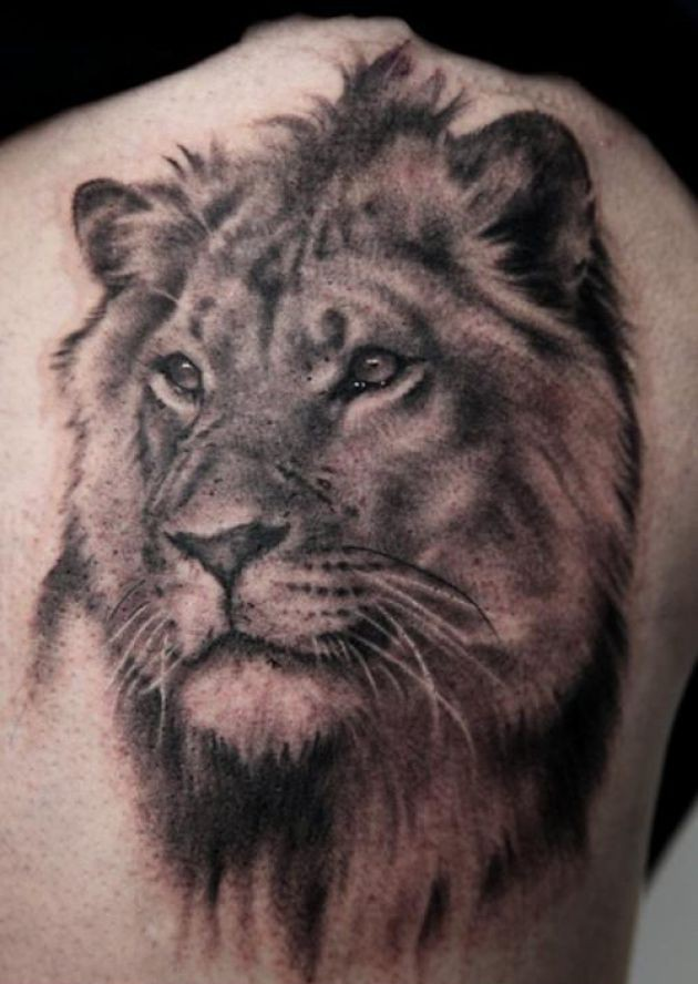 Amazing lion head animal tattoo