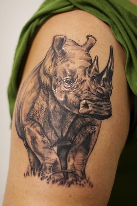 incredibile rinoceronte sta su erba tatuaggio su spalla