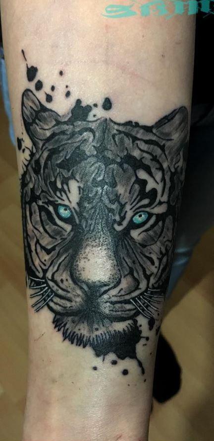 Tigre con gli occhi azzurri in stile arte con tigre colorata