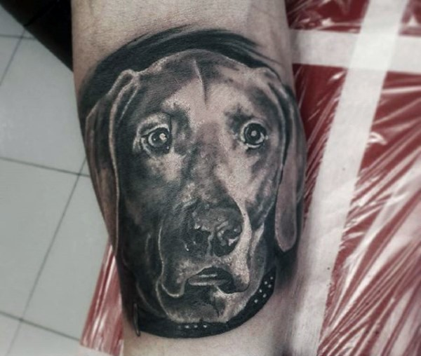 Awesome black ink realistic dog portrait tattoo on arm