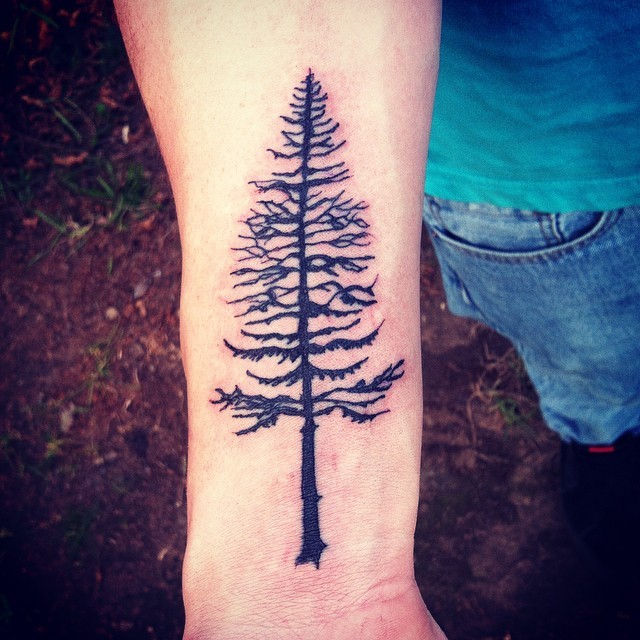 Awesome detailed pine tree dark black ink forearm tattoo