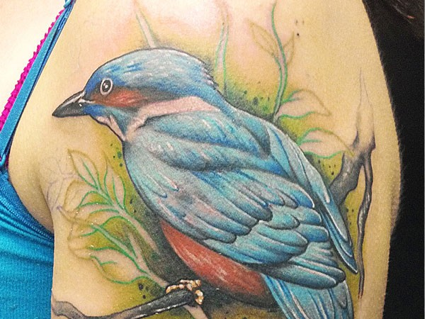 Beautiful blue bird tattoo on shoulder