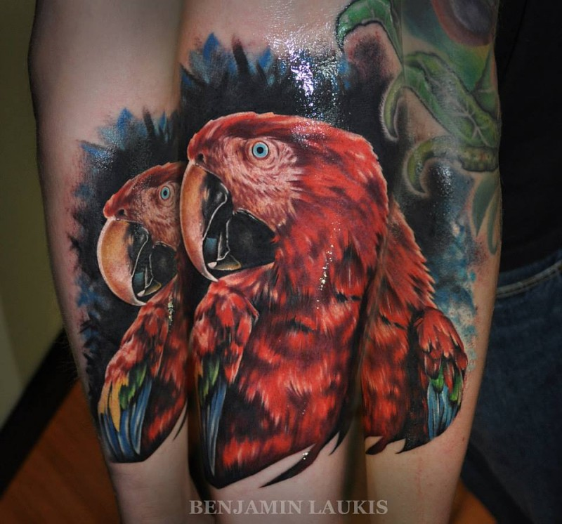 Beautiful looking forearm tattoo fo realistic parrot