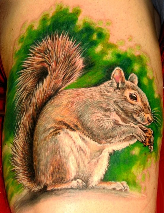 Beautiful squirrel tattoo with nut in forest