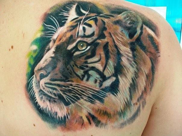 Beautiful tiger head tattoo on shoulder blade