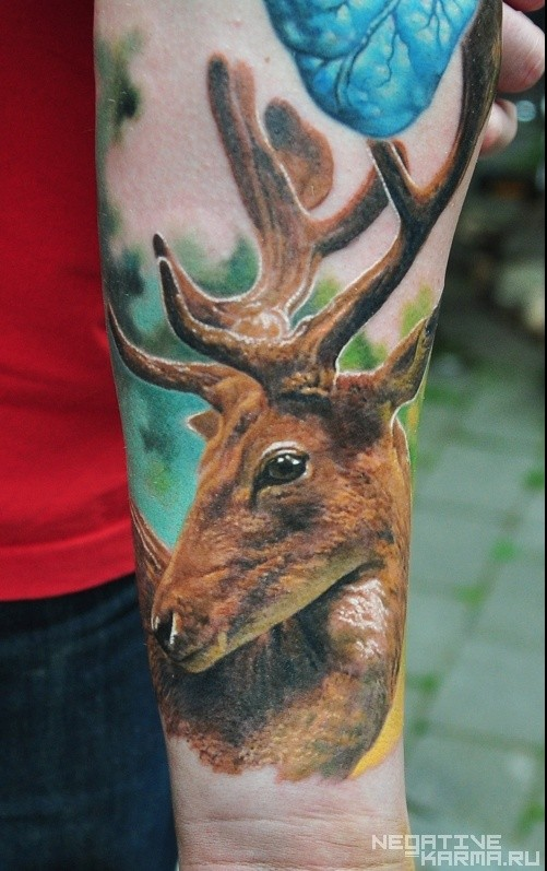 Beautiful very detailed colored big deer tattoo on arm