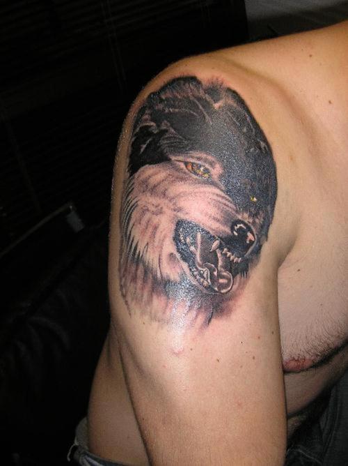 Tatuaggio grande sul deltoide la testa del lupo feroce