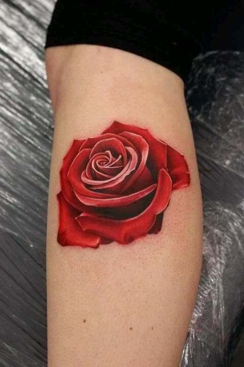 Big 3D like red colored rose tattoo on leg