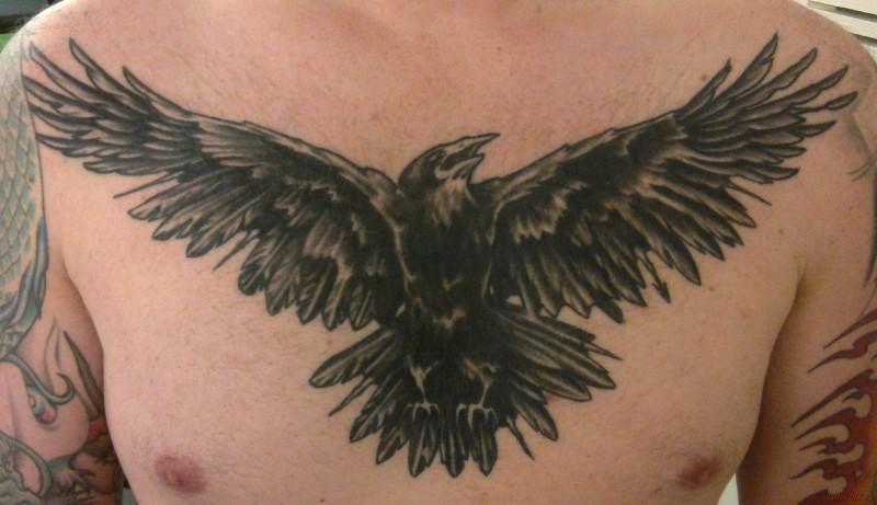 grande nero picchiato corvo tatuaggio sul petto