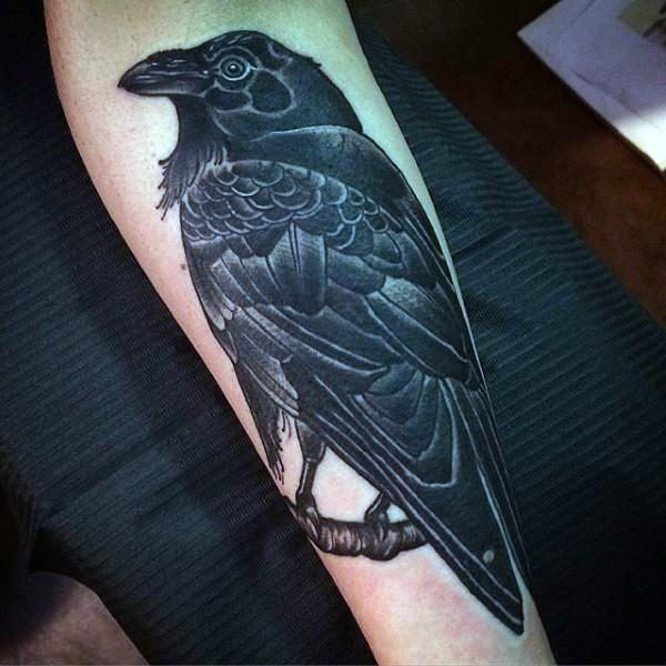 grande dettagliato realistico inchiostro nero corvo tatuaggio su braccio