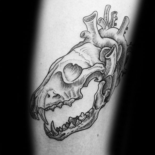 Big line work style tattoo of animal skull combined with human heart