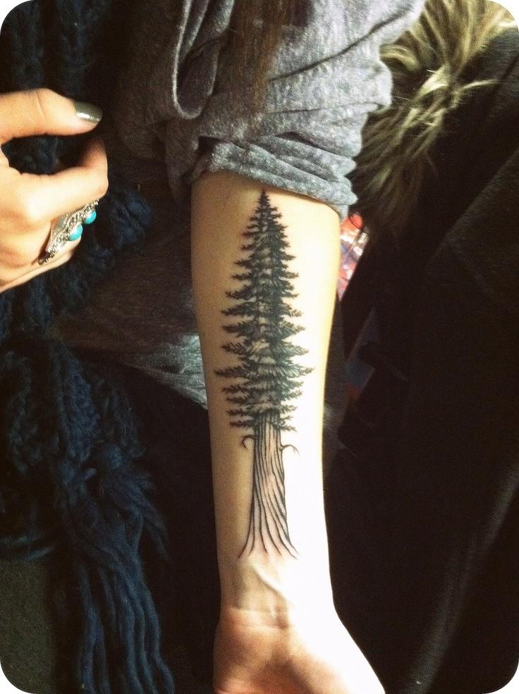 Big spruce forearm tattoo