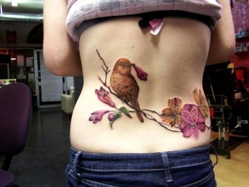 Tatuaggio bello sulla schiena il uccello sul ramo fiorito