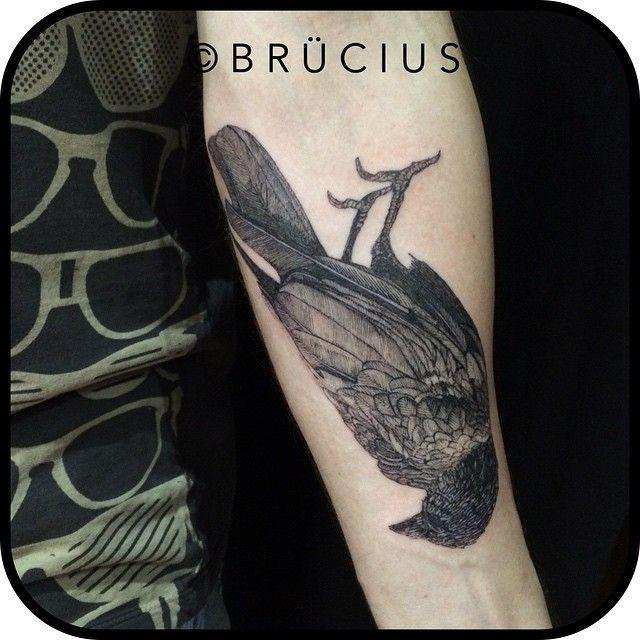 nero grigio uccello avambraccio tatuaggio da Brucius