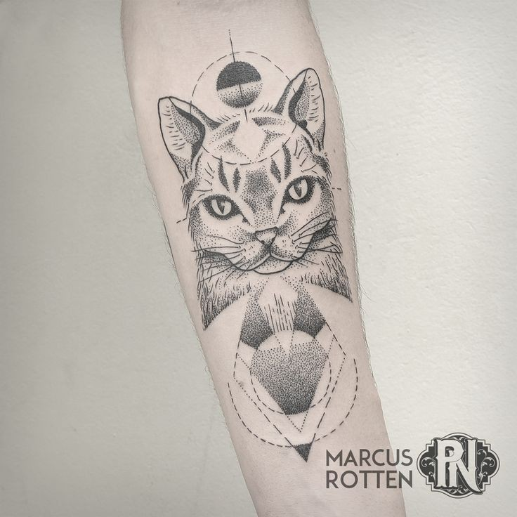 Black ink dot style forearm tattoo of nice cat with various ornaments