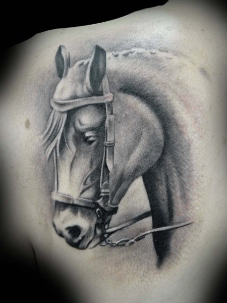 Black ink shoulder tattoo of cool looking horse