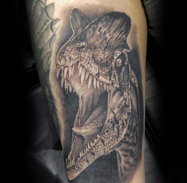 Black ink very detailed forearm tattoo of dinosaur head