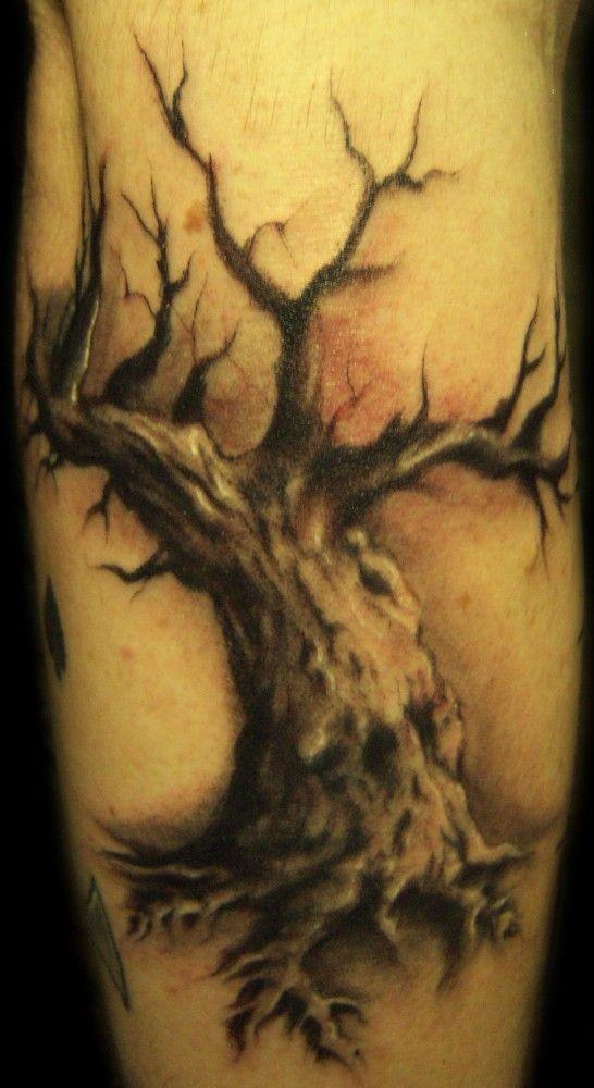 Black old tree tattoo