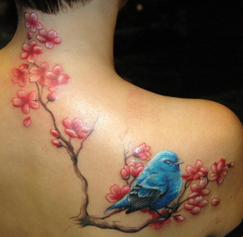 Tatuaggio impressionante sulla schiena l&quotuccello sul ramo di sakura fiorito
