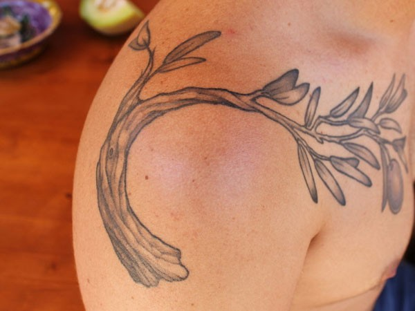 Branch of olive tree tattoo on shoulder