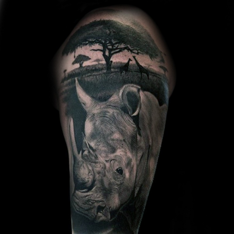 Breathtaking gorgeous looking detailed wild life with various animals and rhino