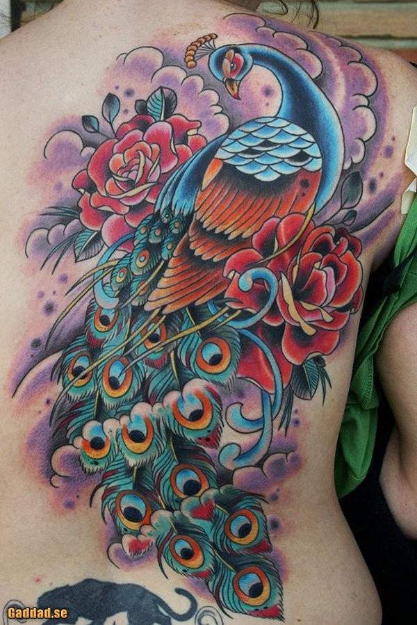 Breathtaking illustrative style colored peacock bird with rose flowers