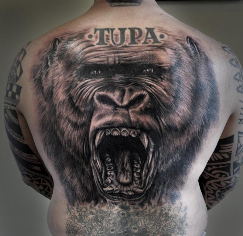Breathtaking realism style detailed large roaring gorilla tattoo on back with lettering